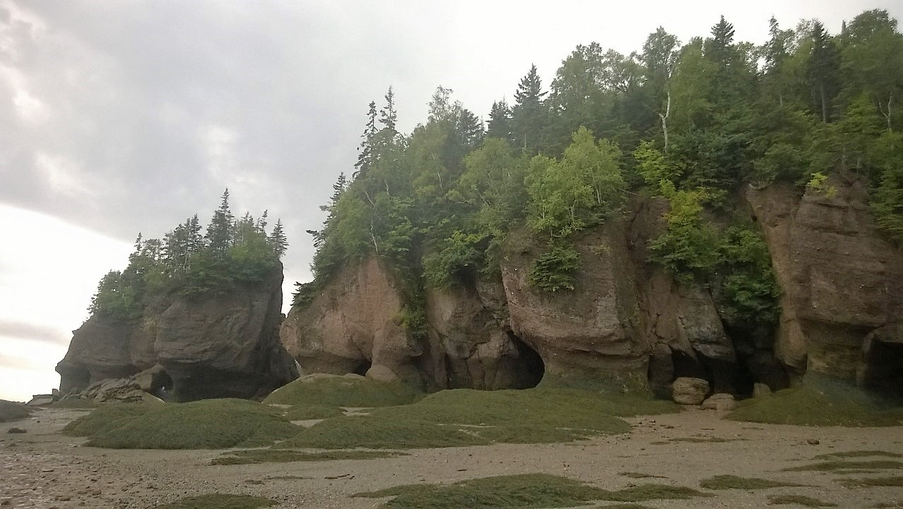 Bay of Fundy leads to the Majestic Hopewell Rocks