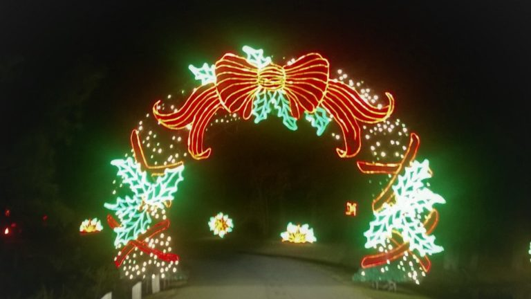 Callaway Gardens Fantasy in Lights- A Magical Wonderland