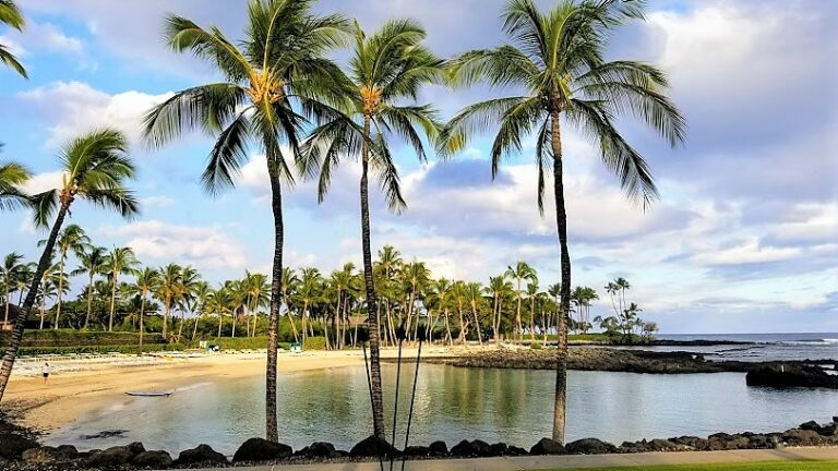 Hawaii's Top Activities on The Big Island
